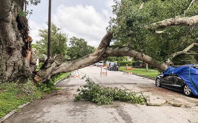 Hurricane Safety and Seniors